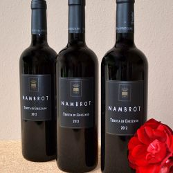 Nambrot 2012 DOC Terre di Pisa Red Wine