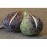 """Big"" Variegated Black Figs"