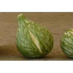 """Big"" Green Figs"