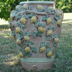 Jar with lemons