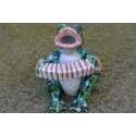 Musician frog - The Accordion